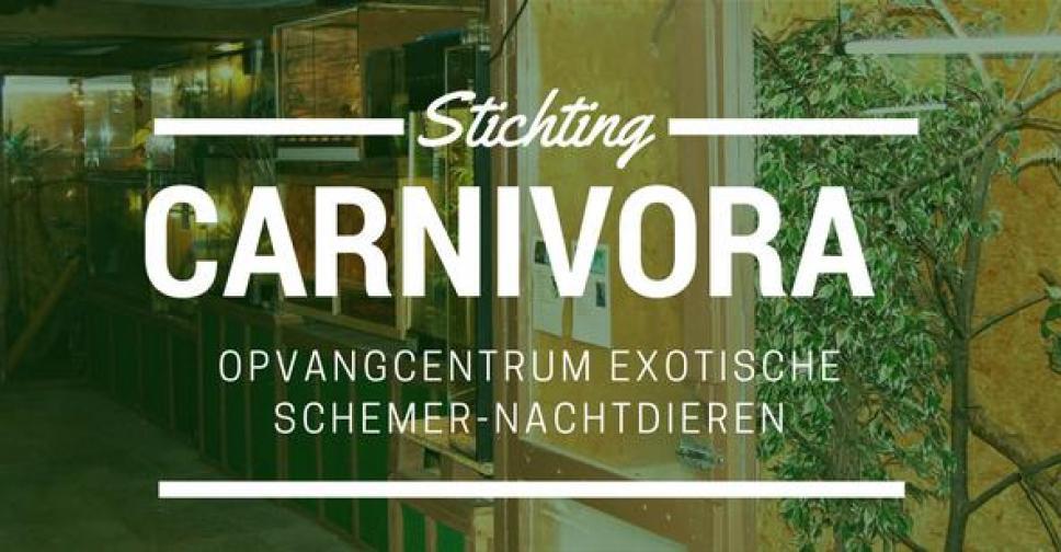 Stichting Carnivora